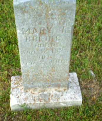 BOLING, MARY A - Greene County, Arkansas | MARY A BOLING - Arkansas Gravestone Photos