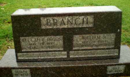 BRANCH, WILLIAM A - Greene County, Arkansas | WILLIAM A BRANCH - Arkansas Gravestone Photos