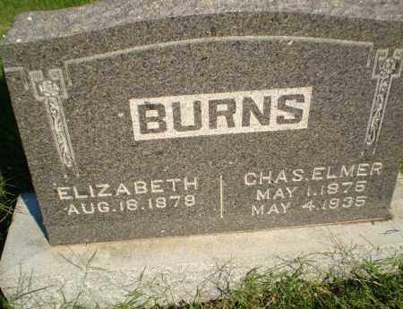 BURNS, CHAS ELMER - Greene County, Arkansas | CHAS ELMER BURNS - Arkansas Gravestone Photos