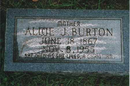 BURTON, ALICE J. - Greene County, Arkansas | ALICE J. BURTON - Arkansas Gravestone Photos