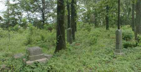 *OVERVIEW 2,  - Greene County, Arkansas |  *OVERVIEW 2 - Arkansas Gravestone Photos