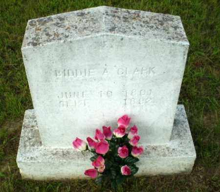 CLARK, BIDDIE A - Greene County, Arkansas | BIDDIE A CLARK - Arkansas Gravestone Photos
