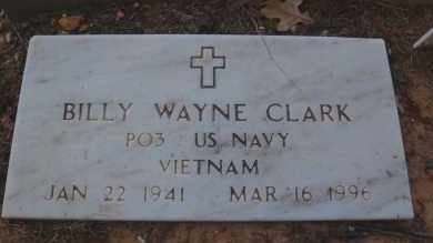 CLARK (VETERAN VIET), BILLY WAYNE - Greene County, Arkansas | BILLY WAYNE CLARK (VETERAN VIET) - Arkansas Gravestone Photos