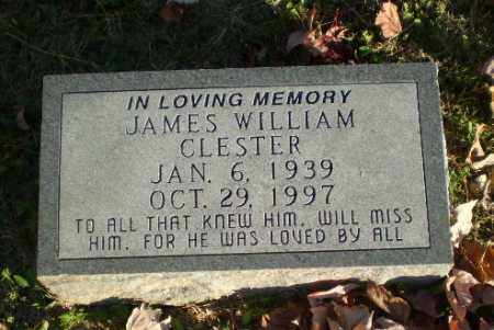 CLESTER, JAMES WILLIAM - Greene County, Arkansas | JAMES WILLIAM CLESTER - Arkansas Gravestone Photos