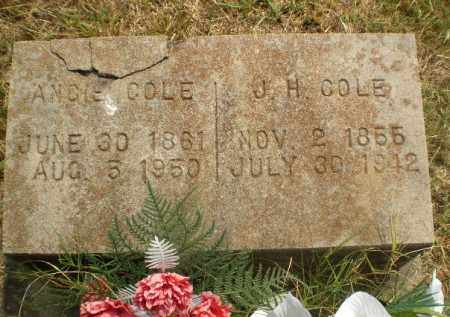 COLE, J.H. - Greene County, Arkansas | J.H. COLE - Arkansas Gravestone Photos