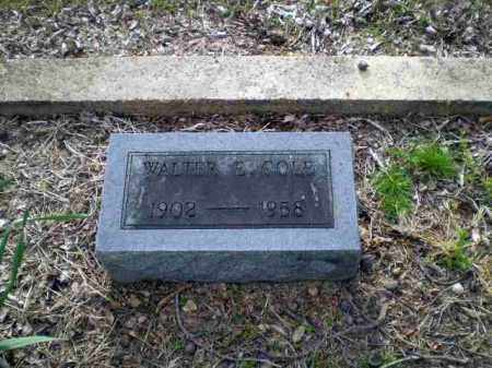 COLE, WALTER - Greene County, Arkansas | WALTER COLE - Arkansas Gravestone Photos
