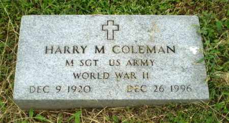 COLEMAN (VETERAN WWII), HARRY M - Greene County, Arkansas | HARRY M COLEMAN (VETERAN WWII) - Arkansas Gravestone Photos