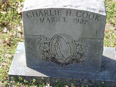 COOK, CHARLIE H. - Greene County, Arkansas | CHARLIE H. COOK - Arkansas Gravestone Photos