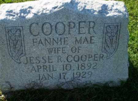 COOPER, FANNIE MAE - Greene County, Arkansas   FANNIE MAE COOPER - Arkansas Gravestone Photos