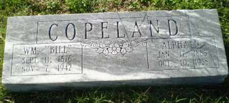 COPELAND, ALPHA N - Greene County, Arkansas | ALPHA N COPELAND - Arkansas Gravestone Photos