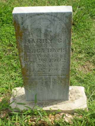 DAVIS, HARRY C - Greene County, Arkansas | HARRY C DAVIS - Arkansas Gravestone Photos