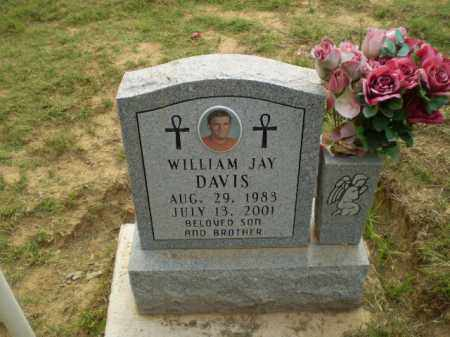 DAVIS, WILLIAM JAY - Greene County, Arkansas | WILLIAM JAY DAVIS - Arkansas Gravestone Photos