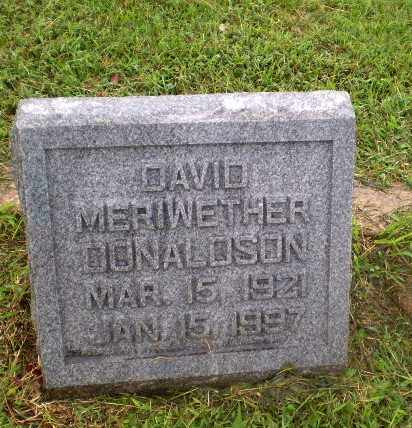DONALDSON, DAVID MERIWETHER - Greene County, Arkansas | DAVID MERIWETHER DONALDSON - Arkansas Gravestone Photos