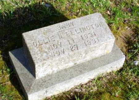 ELLINGTON, OLLIE - Greene County, Arkansas | OLLIE ELLINGTON - Arkansas Gravestone Photos