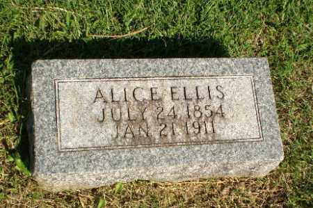 ELLIS, ALICE - Greene County, Arkansas | ALICE ELLIS - Arkansas Gravestone Photos