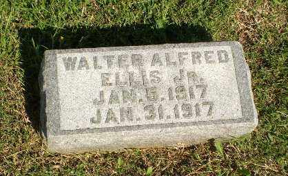 ELLIS, JR, WALTER ALFRED - Greene County, Arkansas | WALTER ALFRED ELLIS, JR - Arkansas Gravestone Photos