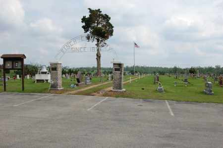 *FINCH CEMETERY, OVERVIEW 1 - Greene County, Arkansas | OVERVIEW 1 *FINCH CEMETERY - Arkansas Gravestone Photos