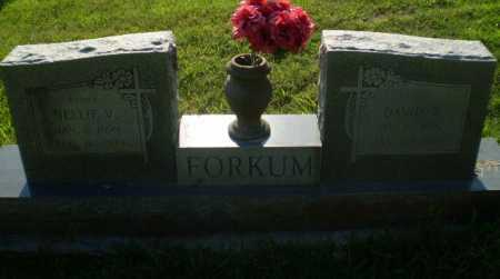 FORKUM, DAVID T - Greene County, Arkansas | DAVID T FORKUM - Arkansas Gravestone Photos