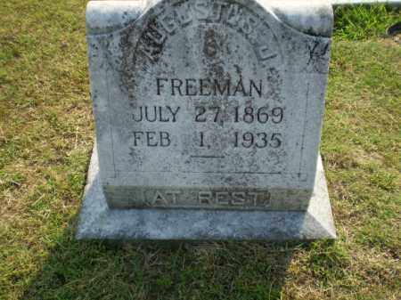 FREEMAN, AUGUSTUS J - Greene County, Arkansas | AUGUSTUS J FREEMAN - Arkansas Gravestone Photos