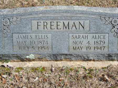 FREEMAN, JAMES ELLIS - Greene County, Arkansas | JAMES ELLIS FREEMAN - Arkansas Gravestone Photos