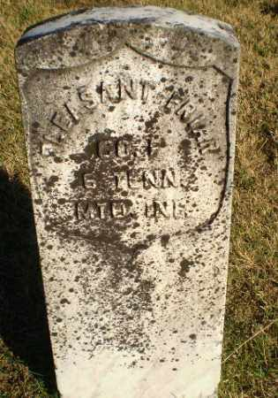 FRIAR (VETERAN UNION), PLEASANT - Greene County, Arkansas | PLEASANT FRIAR (VETERAN UNION) - Arkansas Gravestone Photos