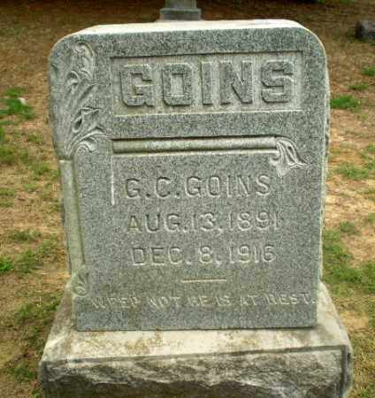 GOINS, G.C. - Greene County, Arkansas | G.C. GOINS - Arkansas Gravestone Photos