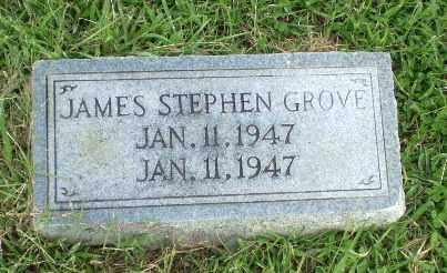 GROVE, JAMES STEPHEN - Greene County, Arkansas | JAMES STEPHEN GROVE - Arkansas Gravestone Photos
