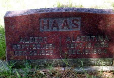 HAAS, ALBERTINA - Greene County, Arkansas | ALBERTINA HAAS - Arkansas Gravestone Photos