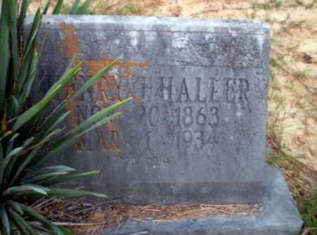 HALLER, HENRY J - Greene County, Arkansas | HENRY J HALLER - Arkansas Gravestone Photos