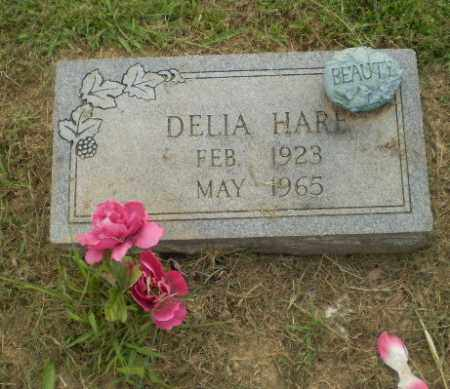 HARE, DELIA - Greene County, Arkansas | DELIA HARE - Arkansas Gravestone Photos