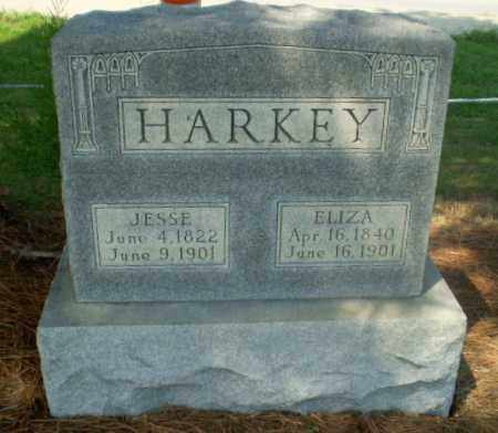 HARKEY, ELIZA - Greene County, Arkansas | ELIZA HARKEY - Arkansas Gravestone Photos