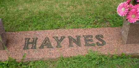 HAYNES FAMILY STONE,  - Greene County, Arkansas |  HAYNES FAMILY STONE - Arkansas Gravestone Photos