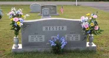HESTER, REBA JOYCE - Greene County, Arkansas | REBA JOYCE HESTER - Arkansas Gravestone Photos