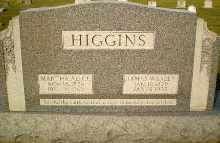HIGGINS, MARTHA ALICE - Greene County, Arkansas | MARTHA ALICE HIGGINS - Arkansas Gravestone Photos