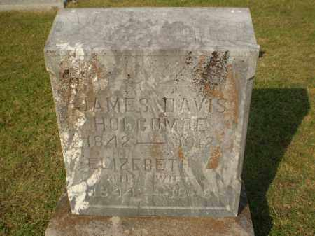 HOLCOMBE, JAMES DAVIS - Greene County, Arkansas | JAMES DAVIS HOLCOMBE - Arkansas Gravestone Photos