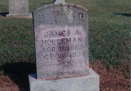 HOLLEMAN, JAMES A. - Greene County, Arkansas | JAMES A. HOLLEMAN - Arkansas Gravestone Photos