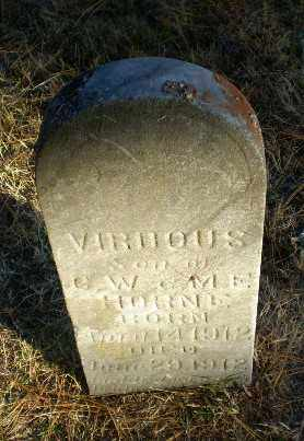 HORNE, VIRDOUS - Greene County, Arkansas | VIRDOUS HORNE - Arkansas Gravestone Photos