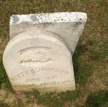 JOHNSON, NETTY B - Greene County, Arkansas | NETTY B JOHNSON - Arkansas Gravestone Photos