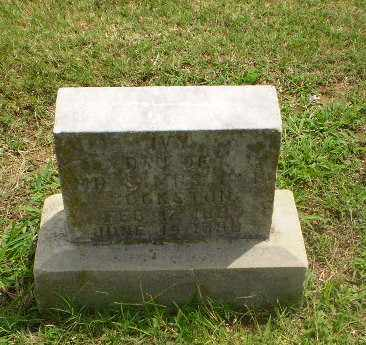 JOHNSTON, IVY - Greene County, Arkansas | IVY JOHNSTON - Arkansas Gravestone Photos