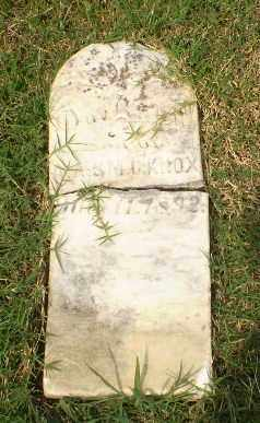 KNOX, INFANT DAUGHTER - Greene County, Arkansas | INFANT DAUGHTER KNOX - Arkansas Gravestone Photos