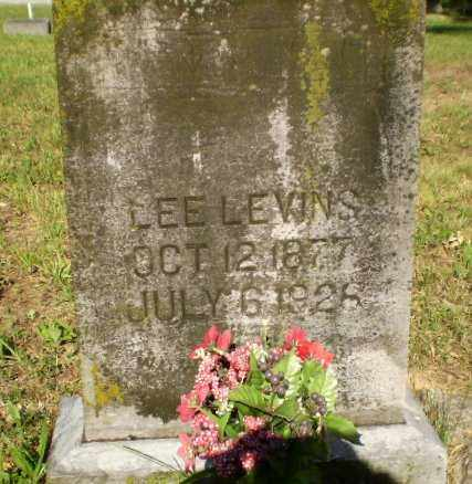 LEVINS, LEE - Greene County, Arkansas | LEE LEVINS - Arkansas Gravestone Photos