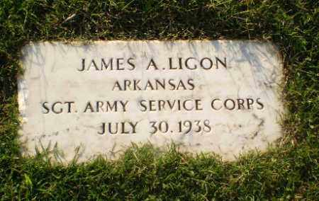 LIGON (VETERAN), JAMES A - Greene County, Arkansas | JAMES A LIGON (VETERAN) - Arkansas Gravestone Photos