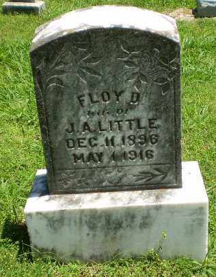 LITTLE, FLOY D - Greene County, Arkansas | FLOY D LITTLE - Arkansas Gravestone Photos