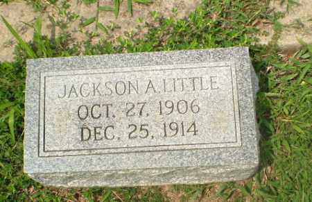 LITTLE, JACKSON A - Greene County, Arkansas | JACKSON A LITTLE - Arkansas Gravestone Photos