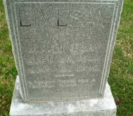 LIVESAY, J.A. - Greene County, Arkansas | J.A. LIVESAY - Arkansas Gravestone Photos