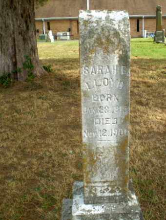 LLOYD, SARAH E - Greene County, Arkansas | SARAH E LLOYD - Arkansas Gravestone Photos