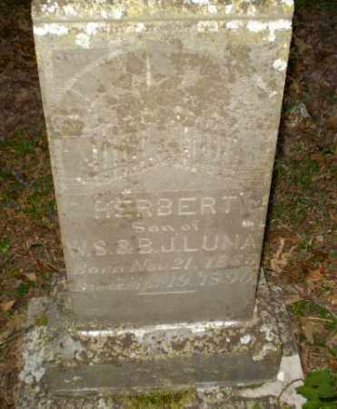 LUNA, HERBERT - Greene County, Arkansas | HERBERT LUNA - Arkansas Gravestone Photos