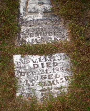 MACK, MARY - Greene County, Arkansas | MARY MACK - Arkansas Gravestone Photos