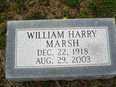 MARSH, WILLIAM HARRY - Greene County, Arkansas | WILLIAM HARRY MARSH - Arkansas Gravestone Photos