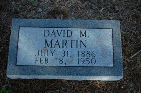 MARTIN, DAVID M. - Greene County, Arkansas | DAVID M. MARTIN - Arkansas Gravestone Photos
